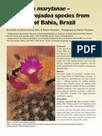 SoaresFilho&Machado2003 (2)