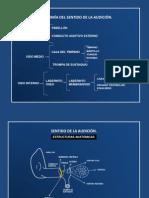 Diapositivas audición