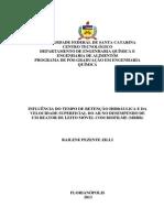 INFLUÊNCIA DO TEMPO DE RETENÇÃO HIDRÁULICA E DA VELOCIDADE SUPERFICIAL DO AR NO DESEMPENHO DE UM REATOR DE LEITO MÓVEL COM BIOFILME (MBBR)