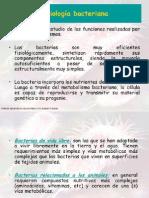 Microbiología Clase 4
