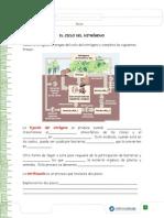 Articles-29120 Recurso Docx