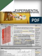 Presentación Tunal Experimental 2