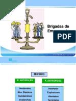 estructura-brigada