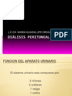 capacitaciondedialisis-110309102243-phpapp01