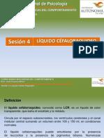 Sesion 4 Líquido Cefalo Raquideo