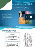 Expo Fx Metarasianos y Falanges
