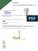 Multiplicar Arbustos Por Acodo