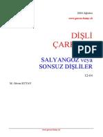 REDUCTEURS - 12 04 Salyangoz Disliler