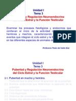 Unidad I, Tema 3 Pubertad, Ciclo Estral y Regulacion