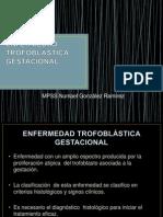 Enfermedad Trofoblstica Gestacional 1230853655679146 1