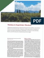 DE OBST UND WEINBAU Weinbau in Argentina.pdf
