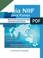 Gbs2014 Niif Micro Pymes eBook