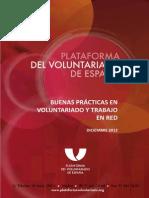 Informe Plataforma de Voluntariado en ESpaña_2012