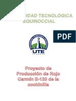 Proyecto de Producción de Rojo Carmín E-120