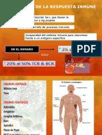 Inmunologia Viernes