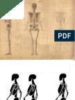 anatomia del cuerpo.pdf