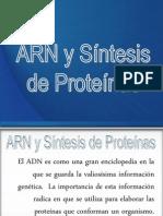 ARN y Síntesis de Proteínas