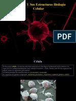 Fatouh - 3er Ano - Celulas y estructuras celulares (Biologia Celular)