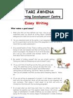 2007_essay_writing
