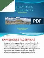 EXPRESIONES ALGEBRAICAS 2014