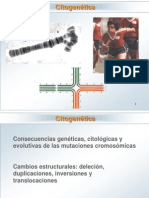 CITOGENETICA.ppt
