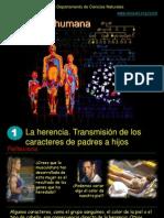 geneticahumana-090327125556-phpapp01
