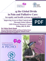 Closing the Global Divide  in Pain and Palliative Care