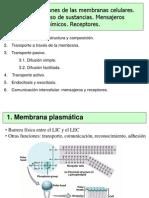 EXPOSICIÓN DE MEMBRANAS.pptx