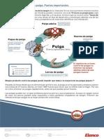 klhlohol.pdf
