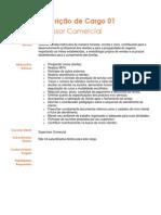 Cargo 01 - Assessor Comercial