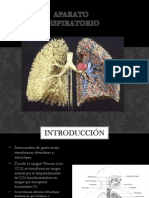 aparatorespiratorio-130910133752-phpapp02.pptx