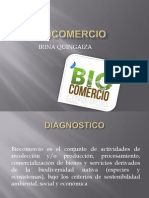 Biocomercio Irina Quingaiza