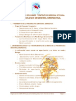 Programa Curso Diplomado La PsicoBiologia Emocional Energética