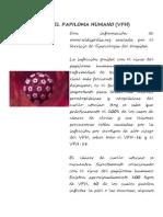 Virus Del Papiloma Humano y Especes