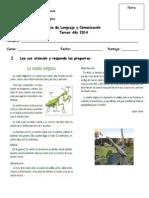 Guia Portafolio1