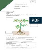 Evaluación de Ciencias Naturales Unidad n 1 Marzo