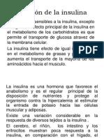 Función de La Insulina