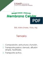 166630552-Membrana-Cel-1