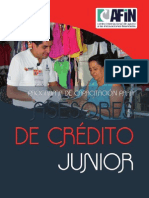 2010 Programa Juniors