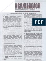 informe de organizacion