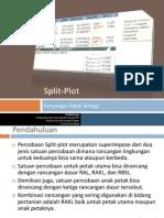 8 Split Plot