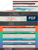 EIN-Infografia-BRIC.pdf