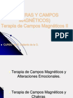 CHAKRAS+y+campos+magnéticos
