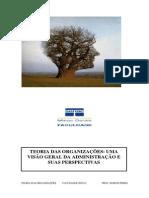 1.1. Teoria das Organizações - impresso.pdf