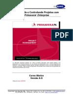 Apostila Primavera Enterprise_Versão 6.0