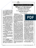 1989 Issue 1 - What is Calvinism?