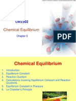 CM1502 Chapter 5 Chemical Equilibrium