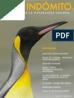 Chile Indómito N.1 - Febrero de 2013
