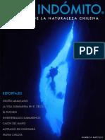 Chile Indómito N4 - Mayo 2013