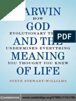 Steve Stewart-William